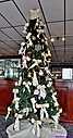 Christmas Tree by Marilynne in Plants