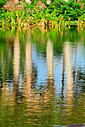 Reflection by Marilynne