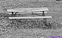 Picnic Table by Marilynne in B/W