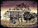 Observation Tower by Marilynne in Contests