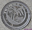 Manhole Cover by Marilynne