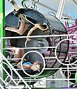 Carnival Rides by Marilynne in People I don't know