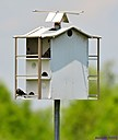 Birdhouse by Marilynne in Landscape