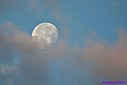 Morning Moon by Marilynne in Stuff