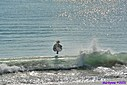 Surfer by Marilynne in People I don't know
