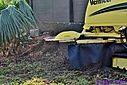 Stump Grinding by Marilynne in Landscape