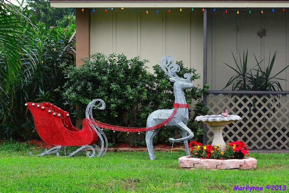 Christmas Sleigh by Marilynne in Landscape