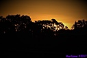 Sunrise by Marilynne in Sunrise/Sunset