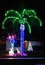 Christmas Lights by Marilynne in Landscape