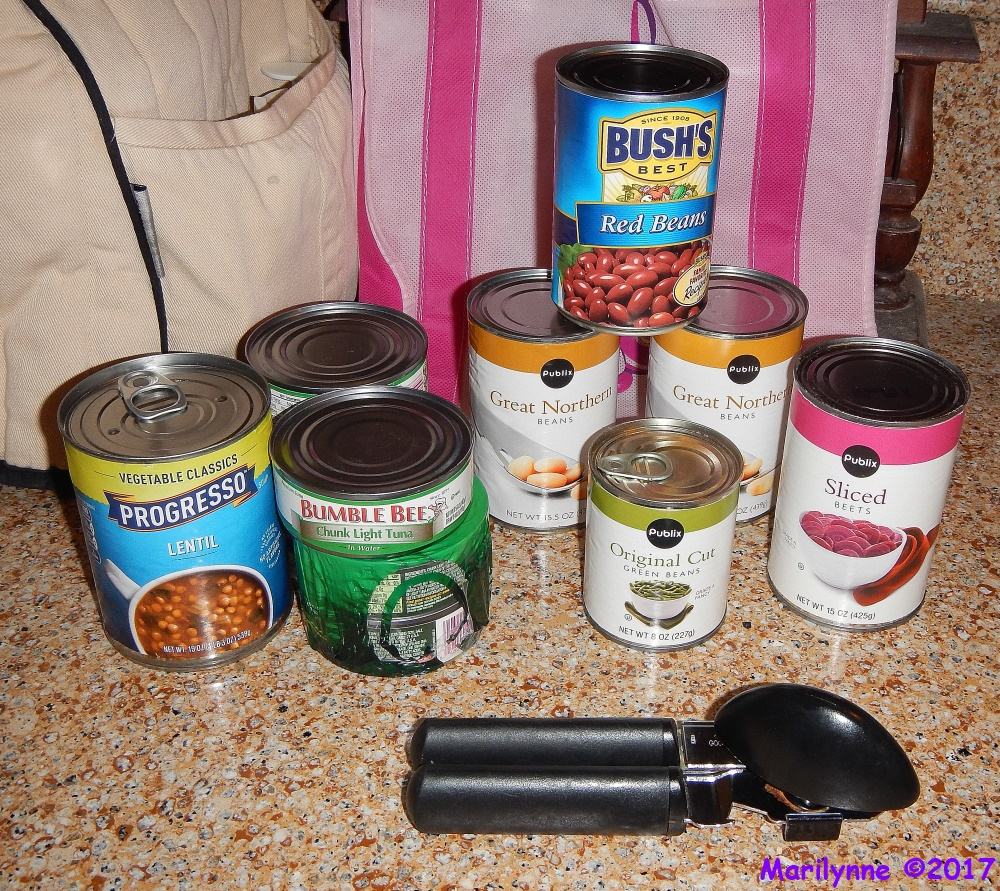 Canned Goods by Marilynne in Stuff