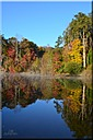 Fall Colors 2014 by PapaRoe in Member Albums