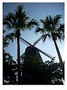 Windmill by janfe in Member Albums
