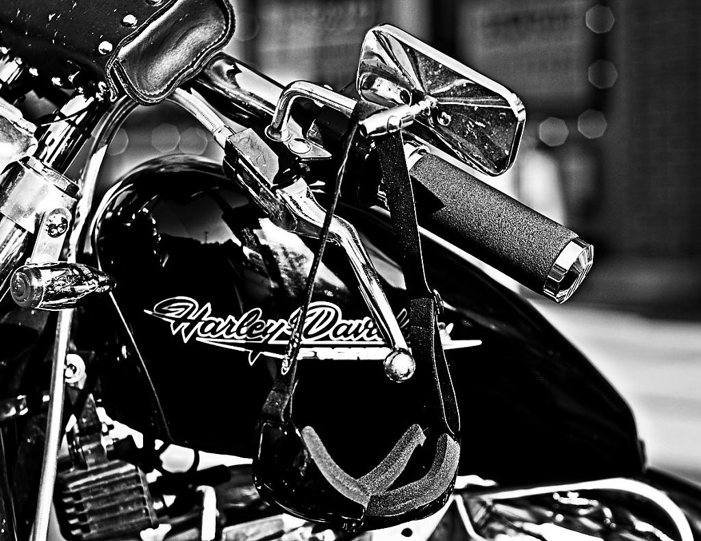 Black and White Harley by Browncoat in Member Albums