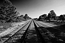 B&W RailroadTracks by FredKingston in Member Albums