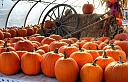 Pumpkin Tent by RockyNH in Member Albums