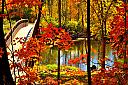 Fall Colors in Michigan by F-Stop in Weekly Photo Challenges