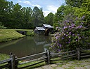 Mabry Mill in Springtime by RON in Member Albums