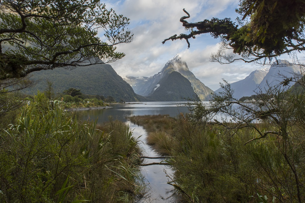 New Zealand by Davoxt in Member Albums