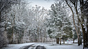 The Cold Road Home by jlg759
