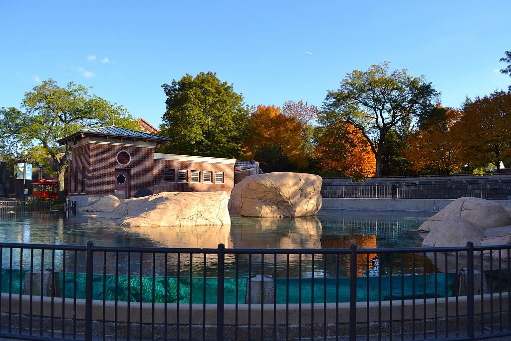 Sea Lion Pool, Lincoln Park Zoo by Eob in Member Albums