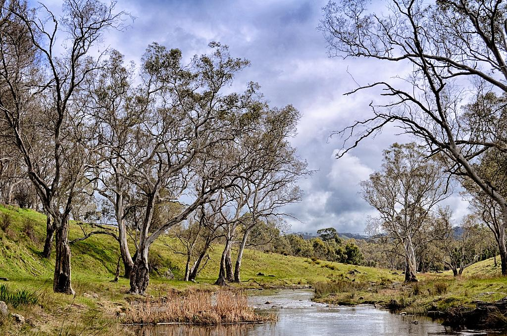 The River Torrens by Ijustwant1 in Member Albums