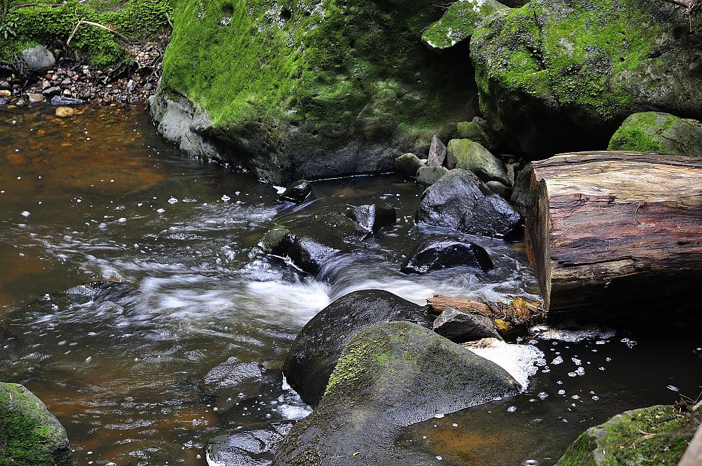 NZ Mountain Stream by PhotoEnth47 in Member Albums