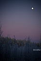 landscapes 2013 by wud in Member Albums