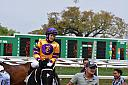 Rosie at Fair Grounds Race Course by donaldjledet in Member Albums