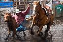 Rodeo action by pipeliner in Member Albums