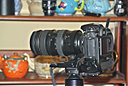 D300+new lens by Bill16 in Member Albums