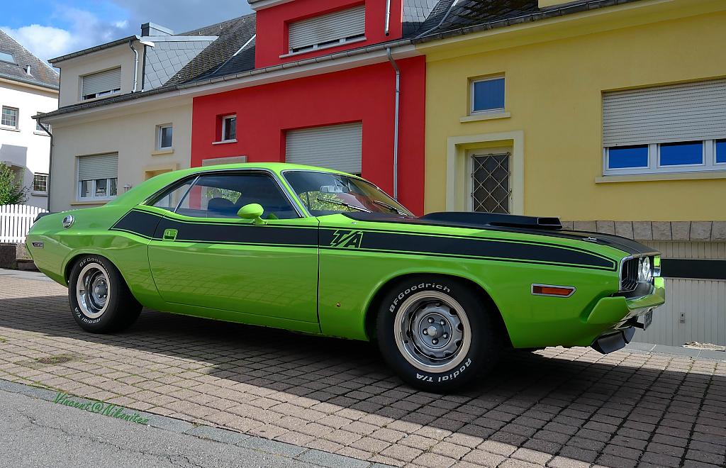 dodge challenger ta - wm by Vincent in Member Albums