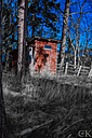 Little shed in the Swedish woods. by Curt