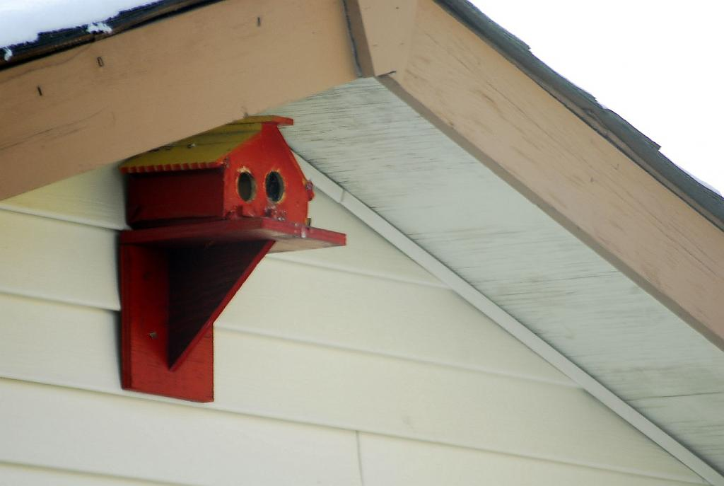 Bird House by fotojack in Member Albums
