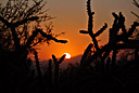 Sunrise-Sunset by Ron Carlson in Member Albums