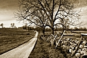 Fence Line at Gettysburg by Jim Maguire in Member Albums