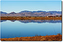 landscape-bird-view-cr 15-12-07 d7100 by cwgrizz in Member Albums