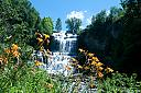 The Falls and Lillie's by Michael Black in Waterfall || Views: 1628