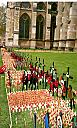 Field of Remembrance by Richard500
