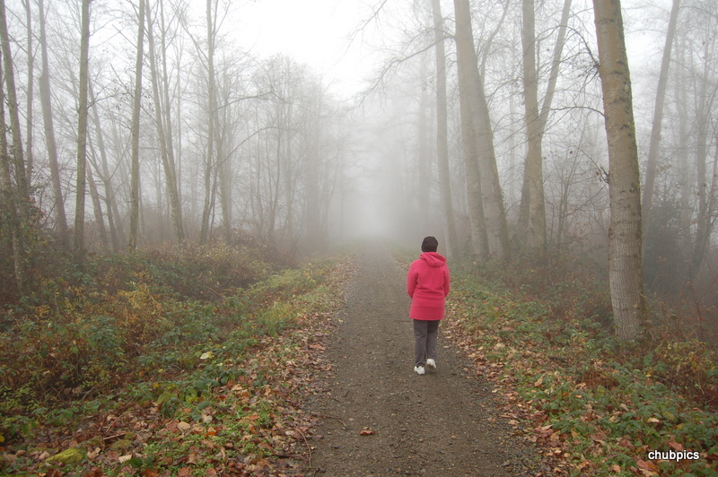 Foggy Path by Chubby in Member Albums