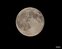 full moon by Chubby in Member Albums