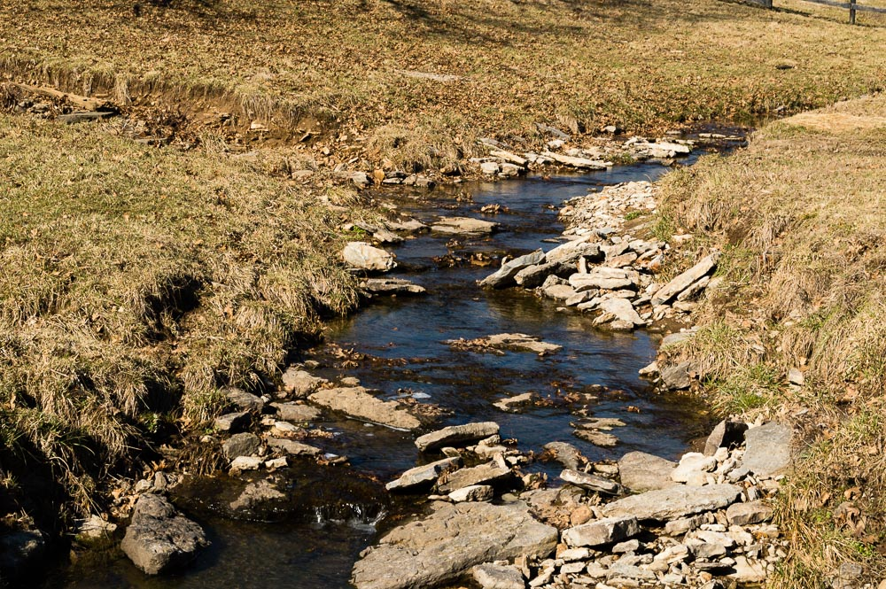 Anderson County Kentucky Stream by Danno in Member Albums