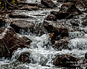 Mountain Stream by sfaribault in Member Albums