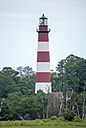 Assateague Lighthouse by 10 Gauge in Member Albums