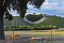 Heart Hill by Kathy Kelly in Member Albums