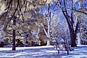 Park Bench in The Snow by msmonka in Member Albums