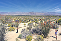 Anza Borrego by Bikerbrent in 2017 Anza-Borrego Trip