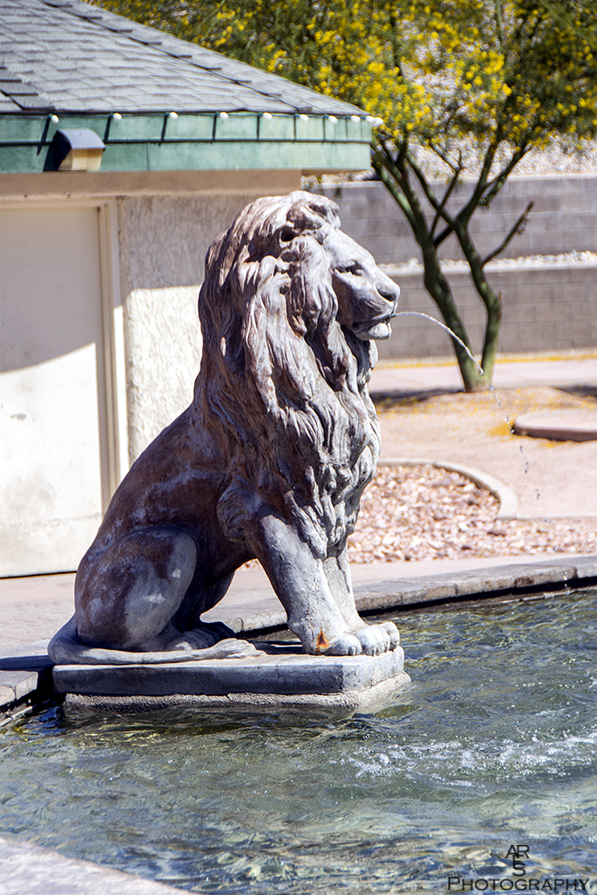 Lion Statue by Bikerbrent in Member Albums