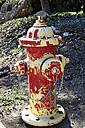 Fire Hydrant by Texas in Member Albums