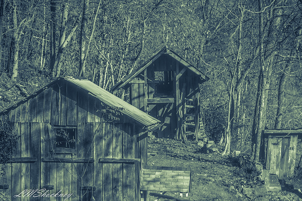 Oh Outhouse  by shockrocks in Member Albums