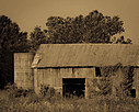 Barn, by shockrocks in Member Albums